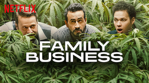 avis-série-netflix-family-business